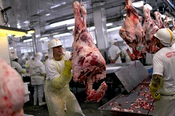 Meat imports in China to top 6 mln tonnes in 2019